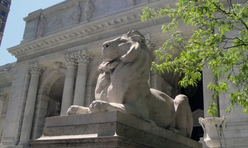 New_York_Public_Library_Lion_May_2011